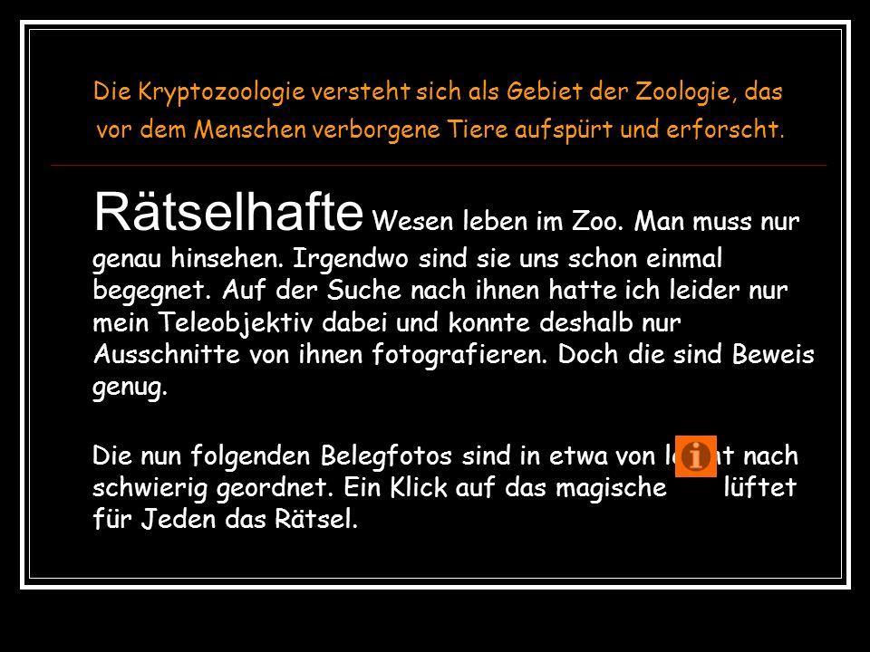 Kryptozoologie im Zoo Hannover Ein Quiz für fortgeschrittene Zoobesucher