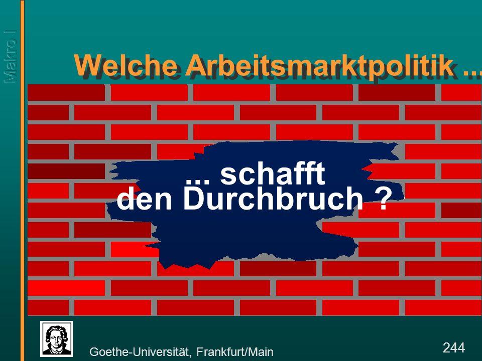 Goethe-Universität, Frankfurt/Main 244... schafft den Durchbruch .
