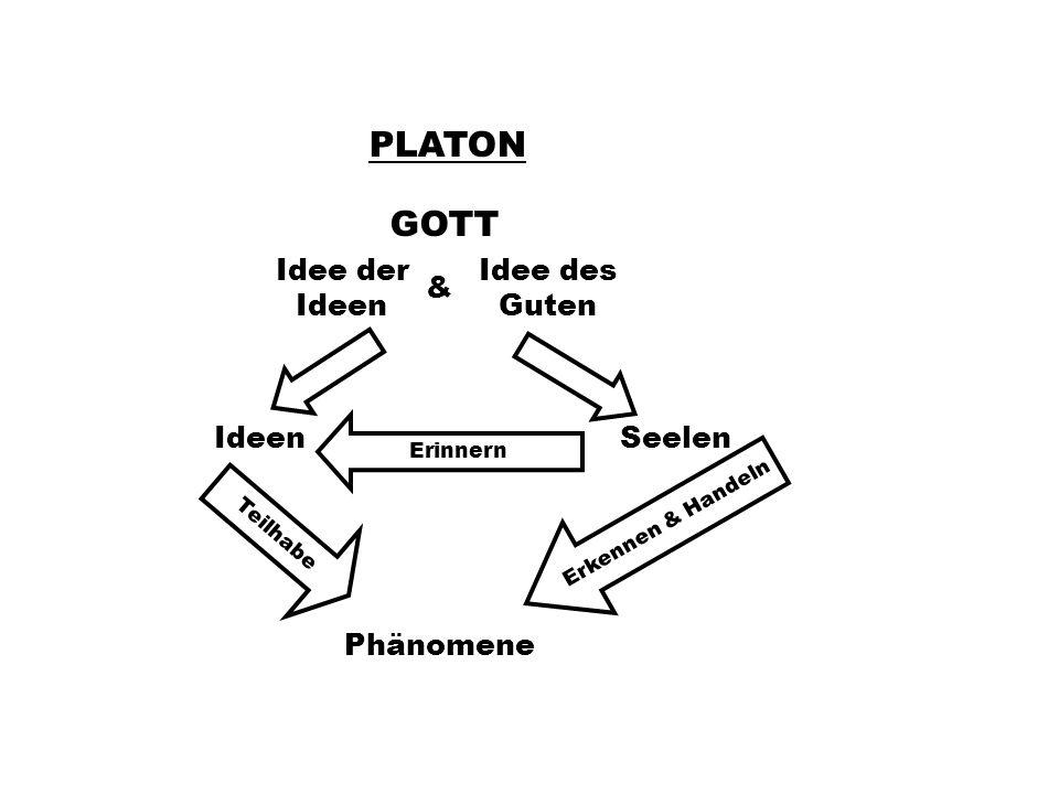 PLATON GOTT Idee der Ideen Idee des Guten & IdeenSeelen Phänomene Erinnern Teilhabe Erkennen & Handeln
