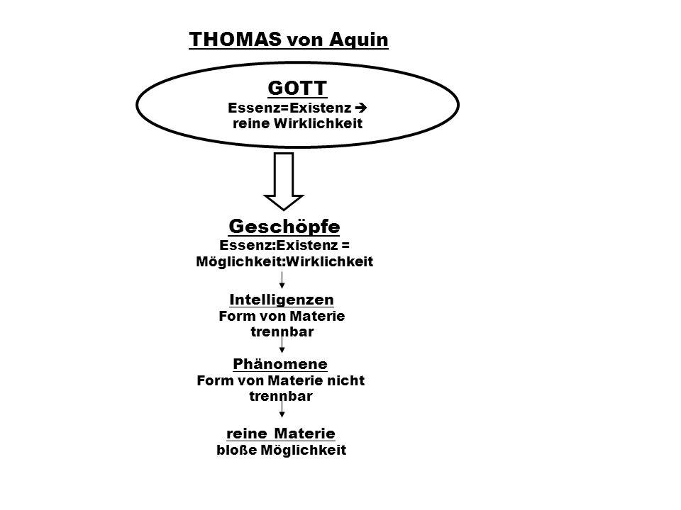 THOMAS von Aquin GOTT Essenz=Existenz reine Wirklichkeit Geschöpfe Essenz:Existenz = Möglichkeit:Wirklichkeit Intelligenzen Form von Materie trennbar Phänomene Form von Materie nicht trennbar reine Materie bloße Möglichkeit
