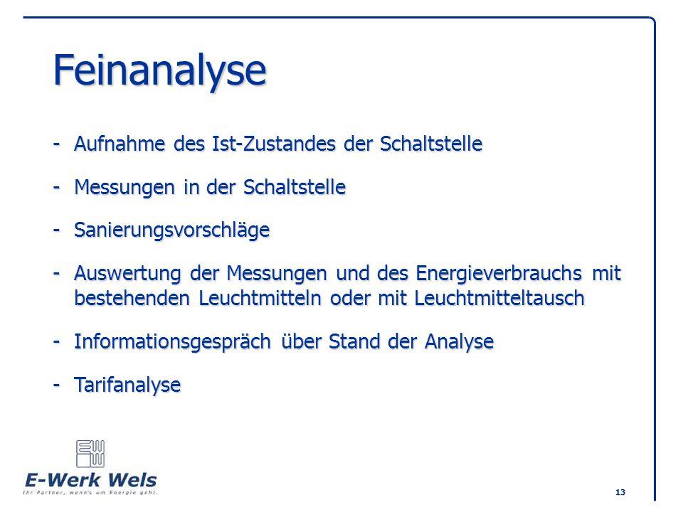 13 Feinanalyse -Aufnahme des Ist-Zustandes der Schaltstelle -Messungen in der Schaltstelle -Sanierungsvorschläge -Auswertung der Messungen und des Ene