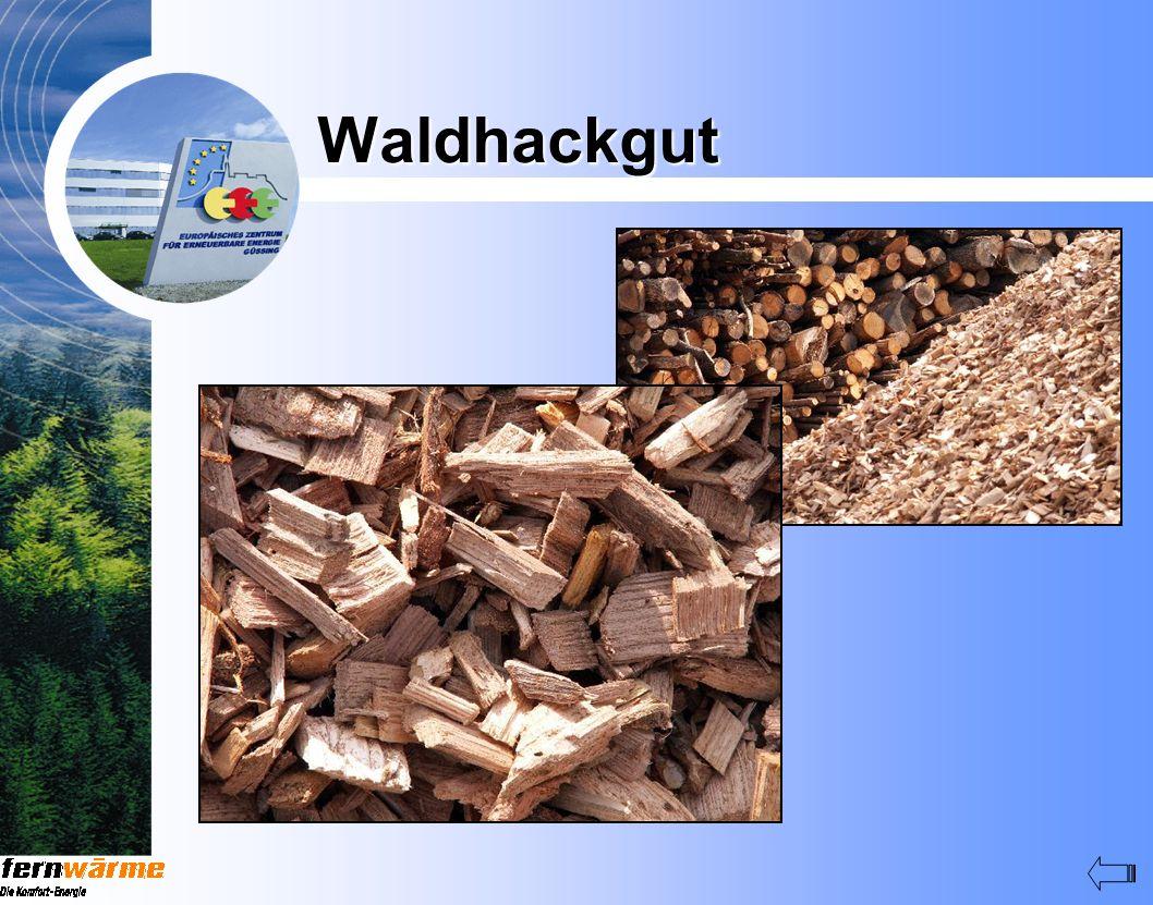 Waldhackgut