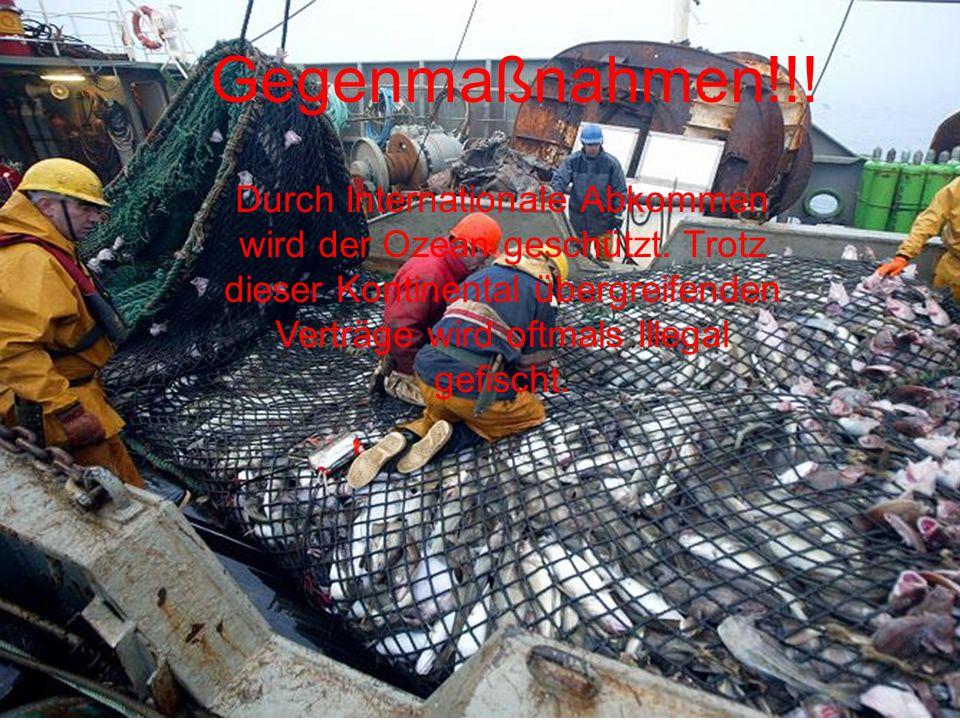 Gegenmaßnahmen!!! Durch Internationale Abkommen wird der Ozean geschützt. Trotz dieser Kontinental übergreifenden Verträge wird oftmals Illegal gefisc