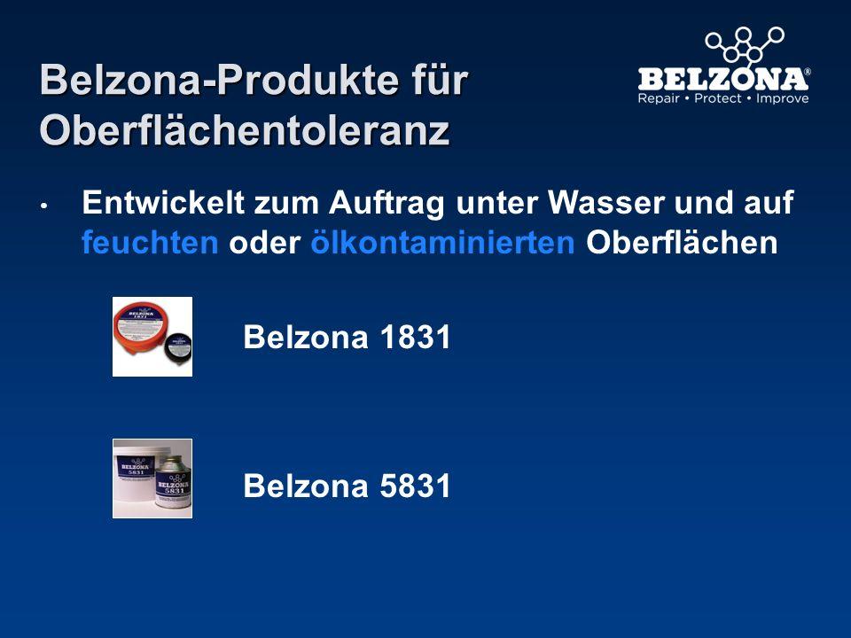 Belzona-Produkte für Oberflächentoleranz Entwickelt zum Auftrag unter Wasser und auf feuchten oder ölkontaminierten Oberflächen Belzona 1831 Belzona 5