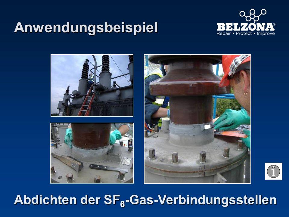 Abdichten der SF 6 -Gas-Verbindungsstellen Anwendungsbeispiel