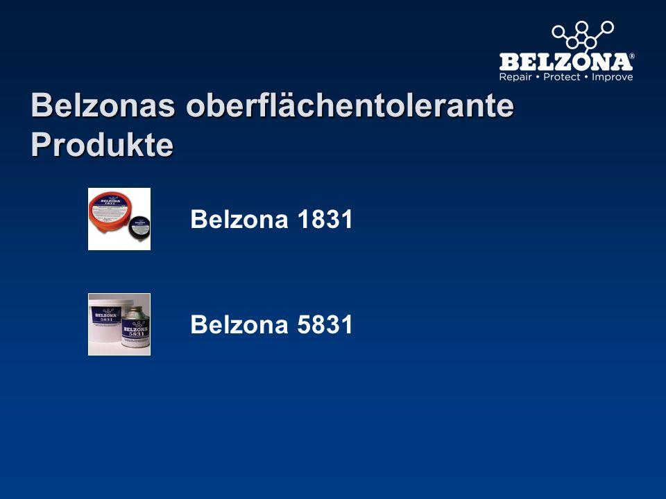 Belzonas oberflächentolerante Produkte Belzona 1831 Belzona 5831
