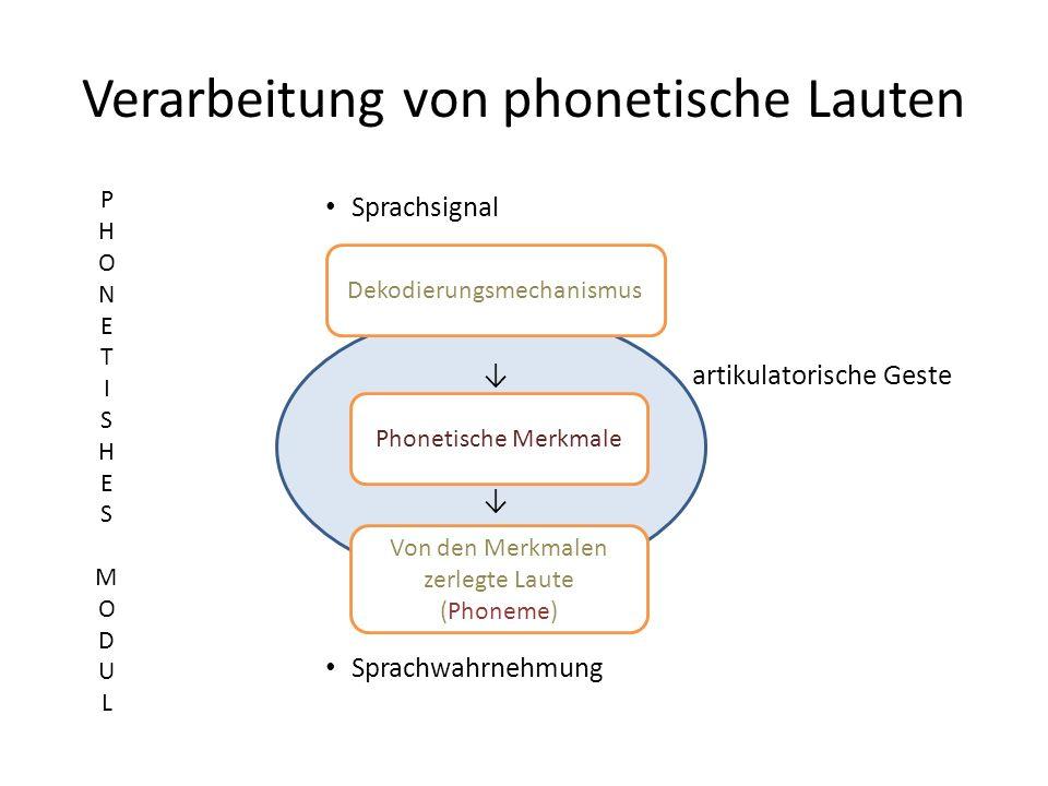 V Verarbeitung von phonetische Lauten Sprachsignal artikulatorische Geste Sprachwahrnehmung Dekodierungsmechanismus Phonetische Merkmale Von den Merkm