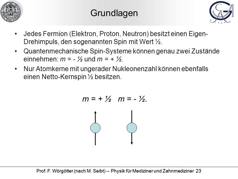 Prof. F. Wörgötter (nach M. Seibt) -- Physik für Mediziner und Zahnmediziner 23 Grundlagen Jedes Fermion (Elektron, Proton, Neutron) besitzt einen Eig