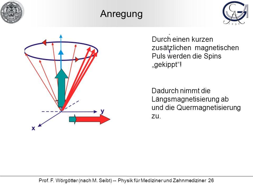 Prof. F. Wörgötter (nach M. Seibt) -- Physik für Mediziner und Zahnmediziner 26 Anregung Durch einen kurzen zusätzlichen magnetischen Puls werden die