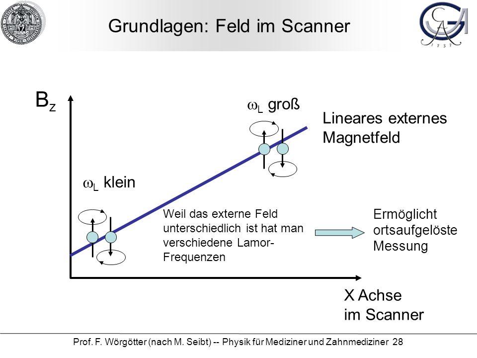 Prof. F. Wörgötter (nach M. Seibt) -- Physik für Mediziner und Zahnmediziner 28 Grundlagen: Feld im Scanner X Achse im Scanner BzBz Lineares externes