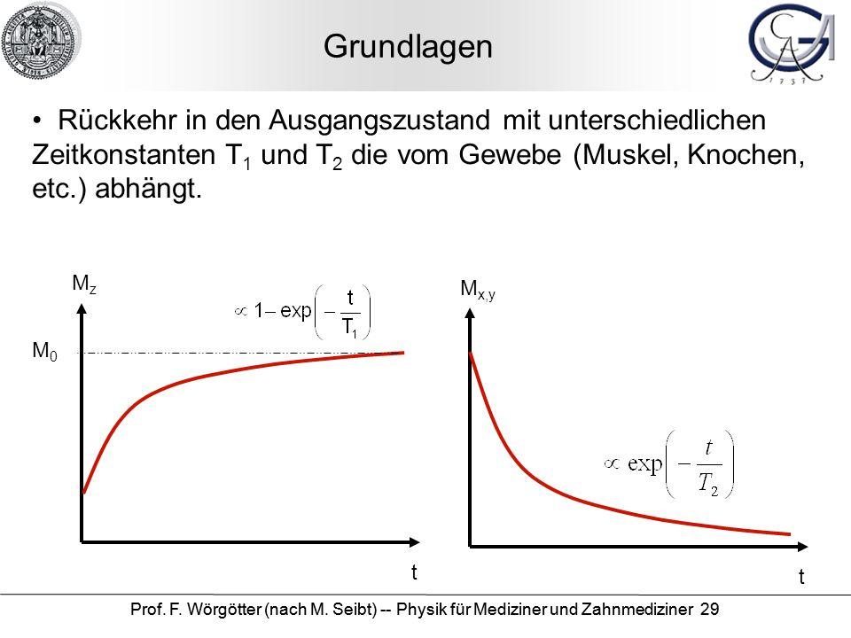 Prof. F. Wörgötter (nach M. Seibt) -- Physik für Mediziner und Zahnmediziner 29 Grundlagen Rückkehr in den Ausgangszustand mit unterschiedlichen Zeitk