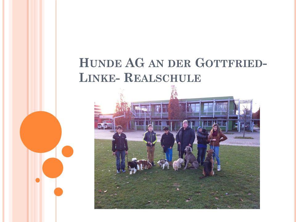 G LIEDERUNG Warum überhaupt eine Hunde-AG.