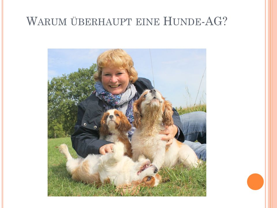 V ORLÄUFIGES F AZIT Hunde AG wird sehr positiv angenommen (aktive Mitarbeit jedes Kindes mit Hund) Steigerung Verantwortungsbewusstsein Stolz mit Hund gemeinsam was erreicht zu haben (z.B.