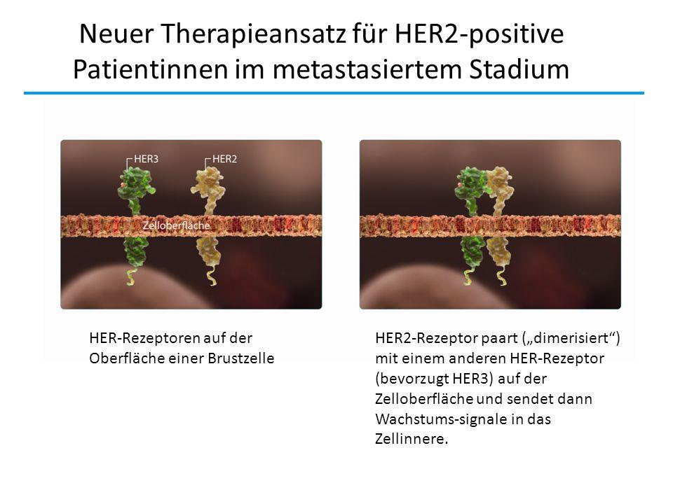 Neuer Therapieansatz für HER2-positive Patientinnen im metastasiertem Stadium HER-Rezeptoren auf der Oberfläche einer Brustzelle HER2-Rezeptor paart (