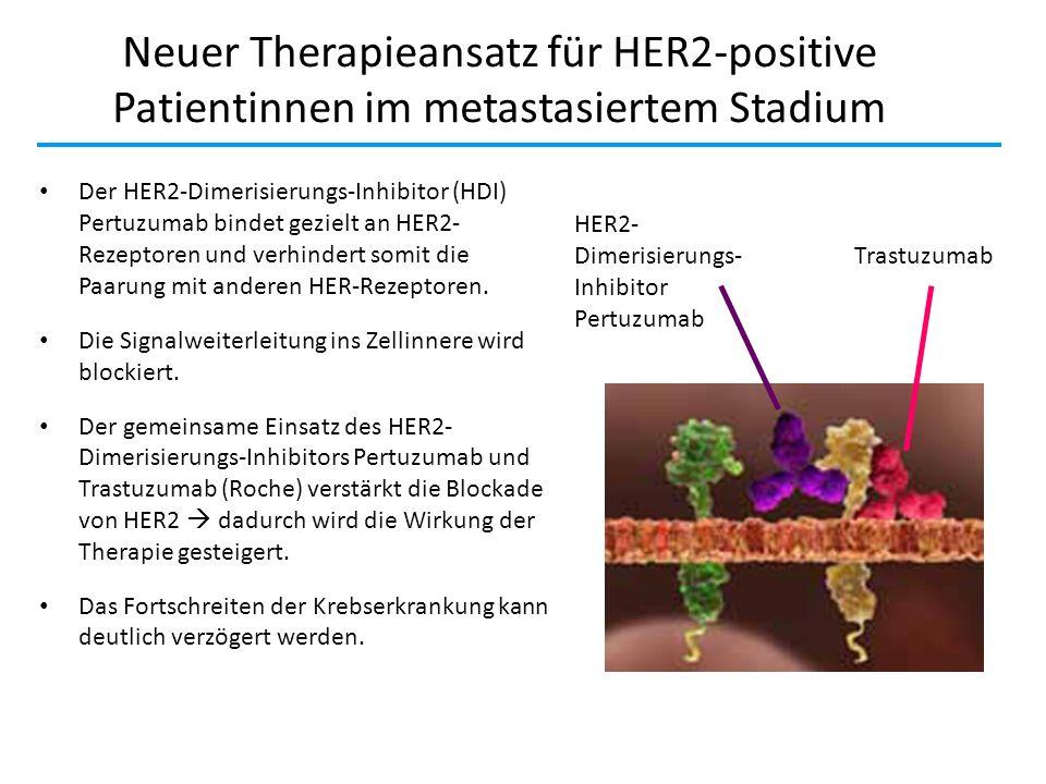 Neuer Therapieansatz für HER2-positive Patientinnen im metastasiertem Stadium Der HER2-Dimerisierungs-Inhibitor (HDI) Pertuzumab bindet gezielt an HER
