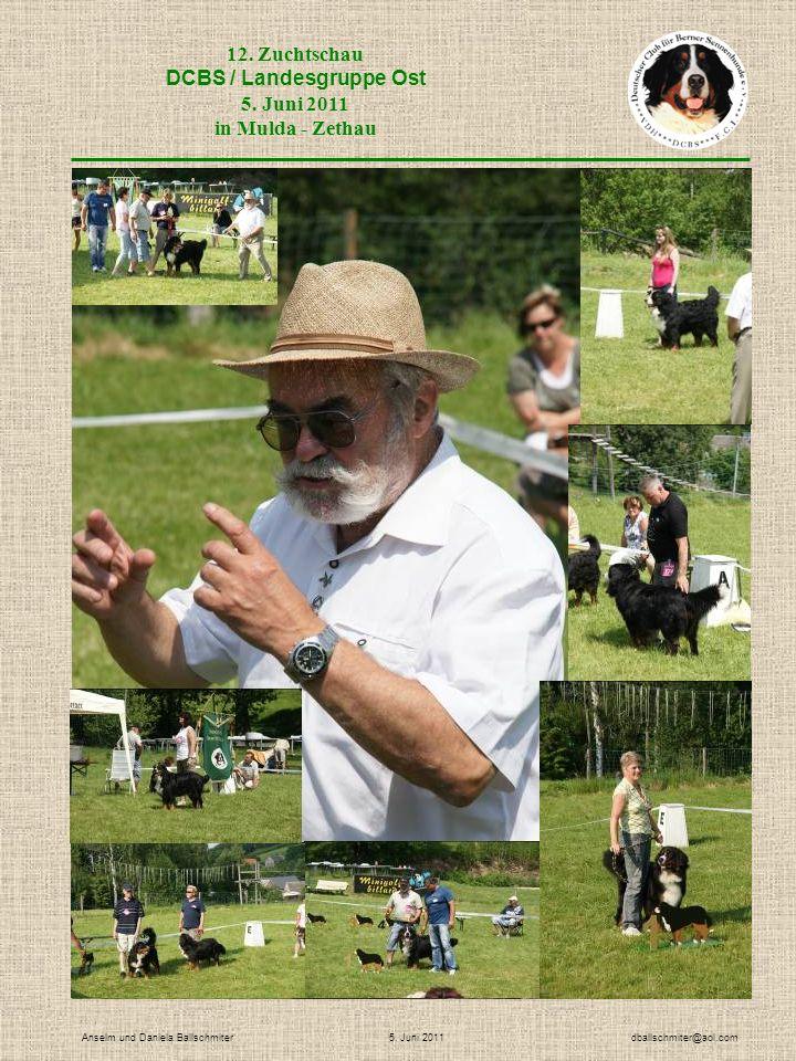 12. Zuchtschau DCBS / Landesgruppe Ost 5. Juni 2011 in Mulda - Zethau Anselm und Daniela Ballschmiter 5. Juni 2011 dballschmiter@aol.com