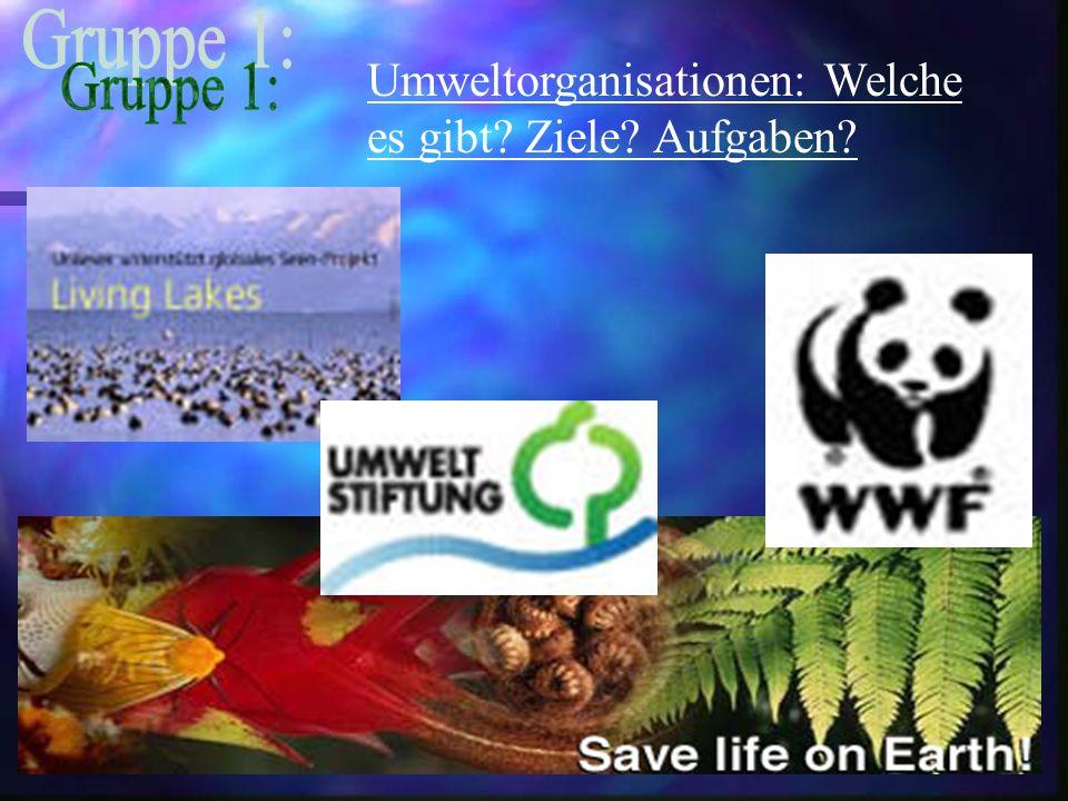Umweltorganisationen: Welche es gibt? Ziele? Aufgaben?