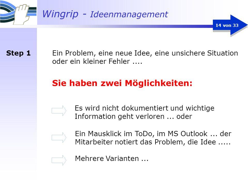 Wingrip - Ideenmanagement 14 von 33 Ein Problem, eine neue Idee, eine unsichere Situation oder ein kleiner Fehler.... Sie haben zwei Möglichkeiten: Es
