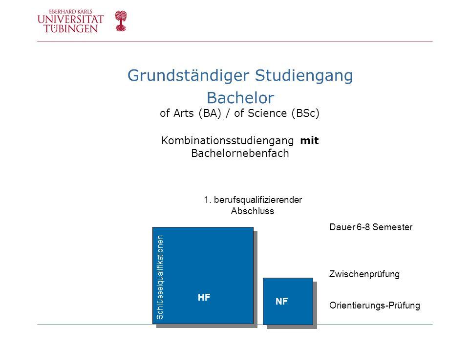 Grundständiger Studiengang Bachelor of Arts (BA) / of Science (BSc) Kombinationsstudiengang mit Bachelornebenfach 1. berufsqualifizierender Abschluss