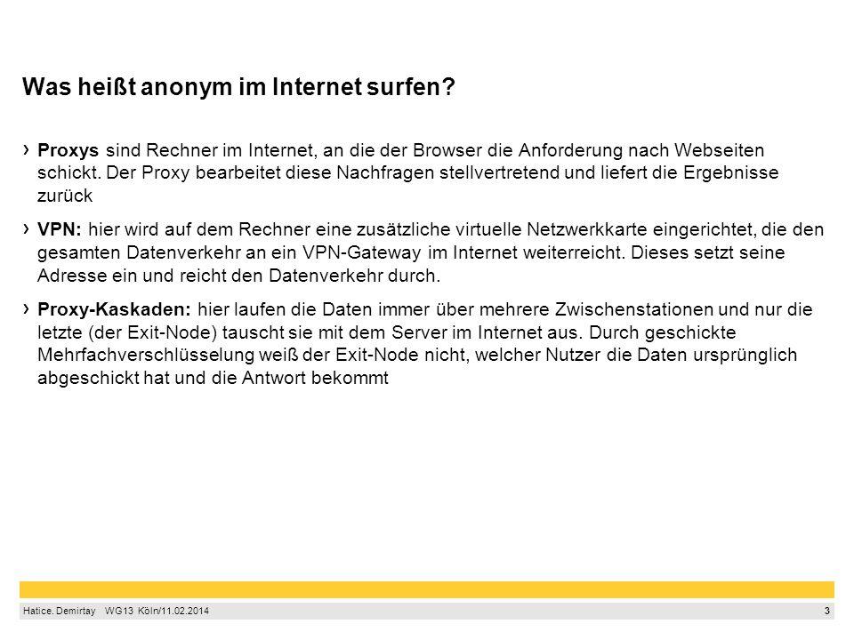 3 Hatice.Demirtay WG13 Köln/11.02.2014 Was heißt anonym im Internet surfen.
