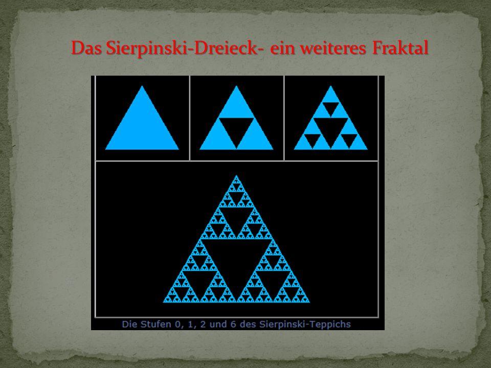 Iterierte Funktionensysteme IFS - Fraktale in der Natur oder entsprechend am PC generiert Für die nachfolgenden Fraktale verwenden wir, anders als bei der Koch schen Kurve oder beim Sierpinski-Dreieck, nicht nur reine Ähnlichkeitsabbildungen, sondern auch die verschiedensten affinen Abbildungen.