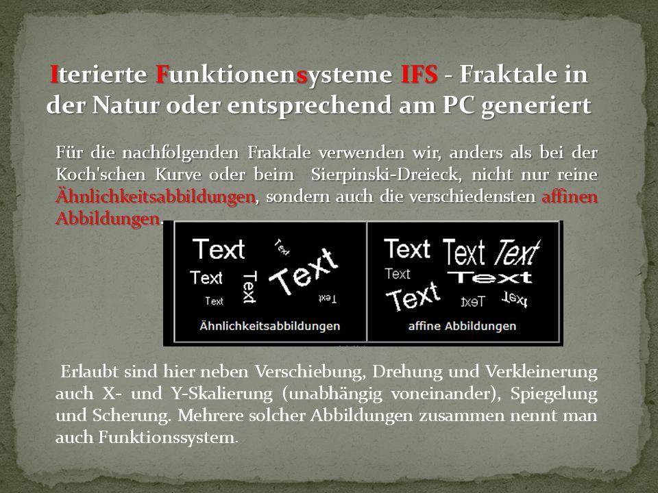 Iterierte Funktionensysteme IFS - Fraktale in der Natur oder entsprechend am PC generiert Für die nachfolgenden Fraktale verwenden wir, anders als bei
