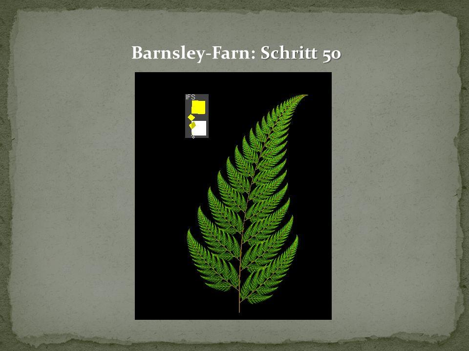 Schritt 50 Barnsley-Farn: Schritt 50