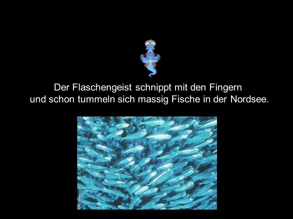 Weiste Geist…, er zeigt auf den Schalker, dieses ganze Schalkerpack, geht mir tierisch auffen Sack.