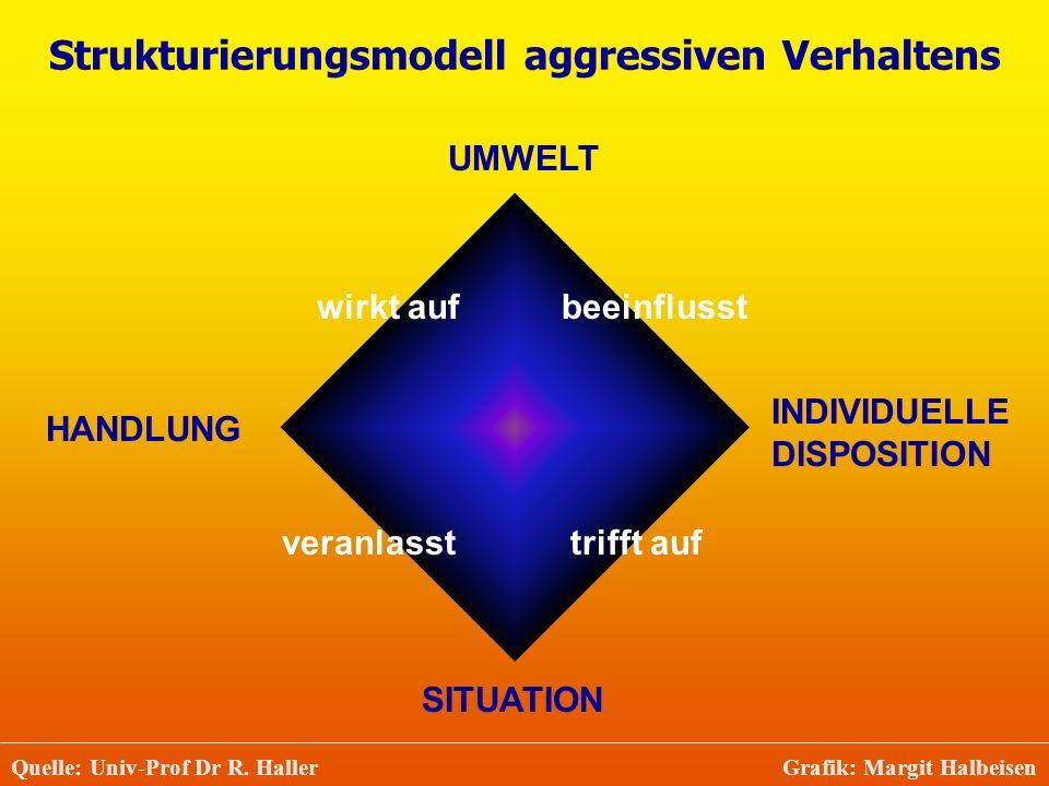 Strukturierungsmodell aggressiven Verhaltens Quelle: Univ-Prof Dr R. Haller Grafik: Margit Halbeisen UMWELT INDIVIDUELLE DISPOSITION HANDLUNG SITUATIO