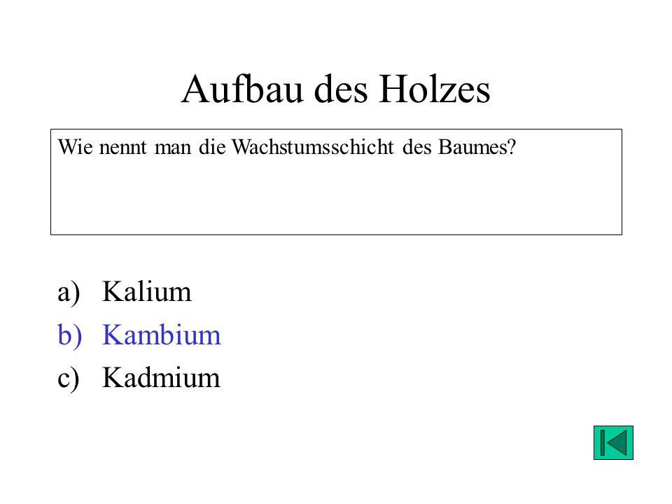 Aufbau des Holzes a)Kalium b)Kambium c)Kadmium Wie nennt man die Wachstumsschicht des Baumes? Lösung