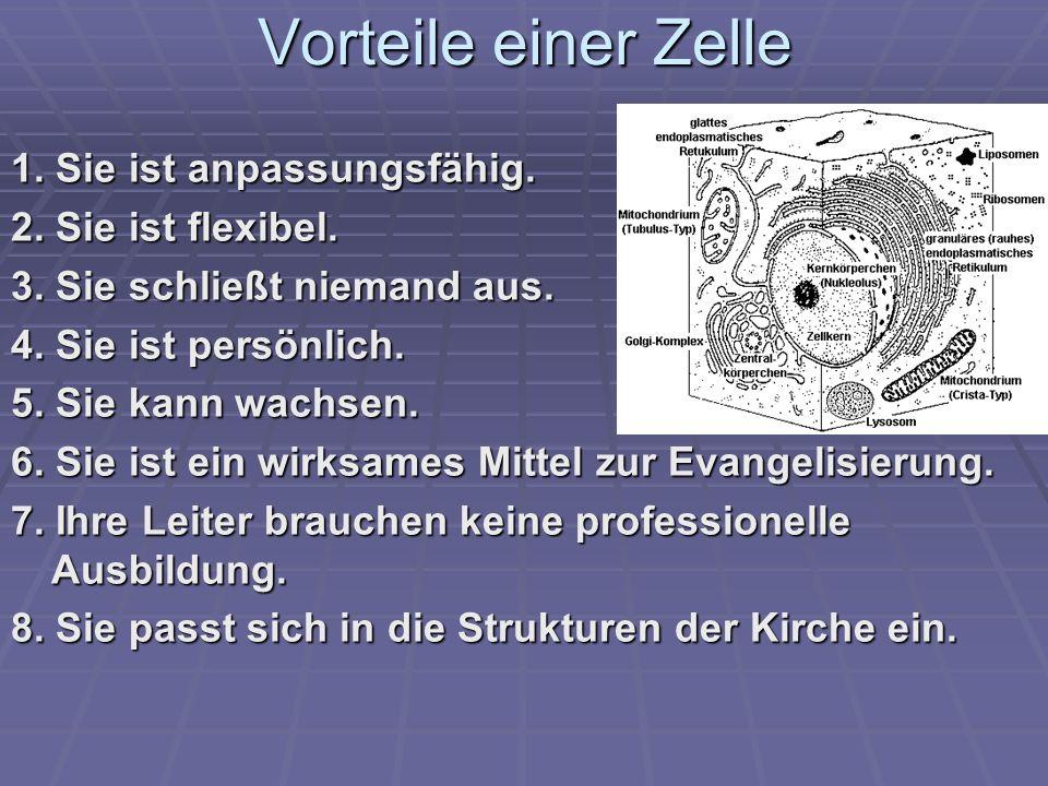 Vorteile einer Zelle 1.Sie ist anpassungsfähig. 2.