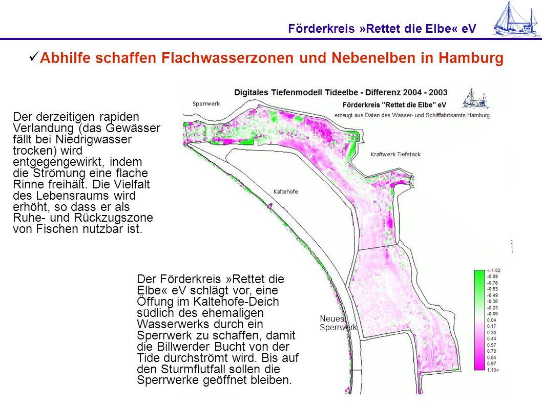 Förderkreis »Rettet die Elbe« eV Abhilfe schaffen Flachwasserzonen und Nebenelben in Hamburg Neues Sperrwerk Der Förderkreis »Rettet die Elbe« eV schl