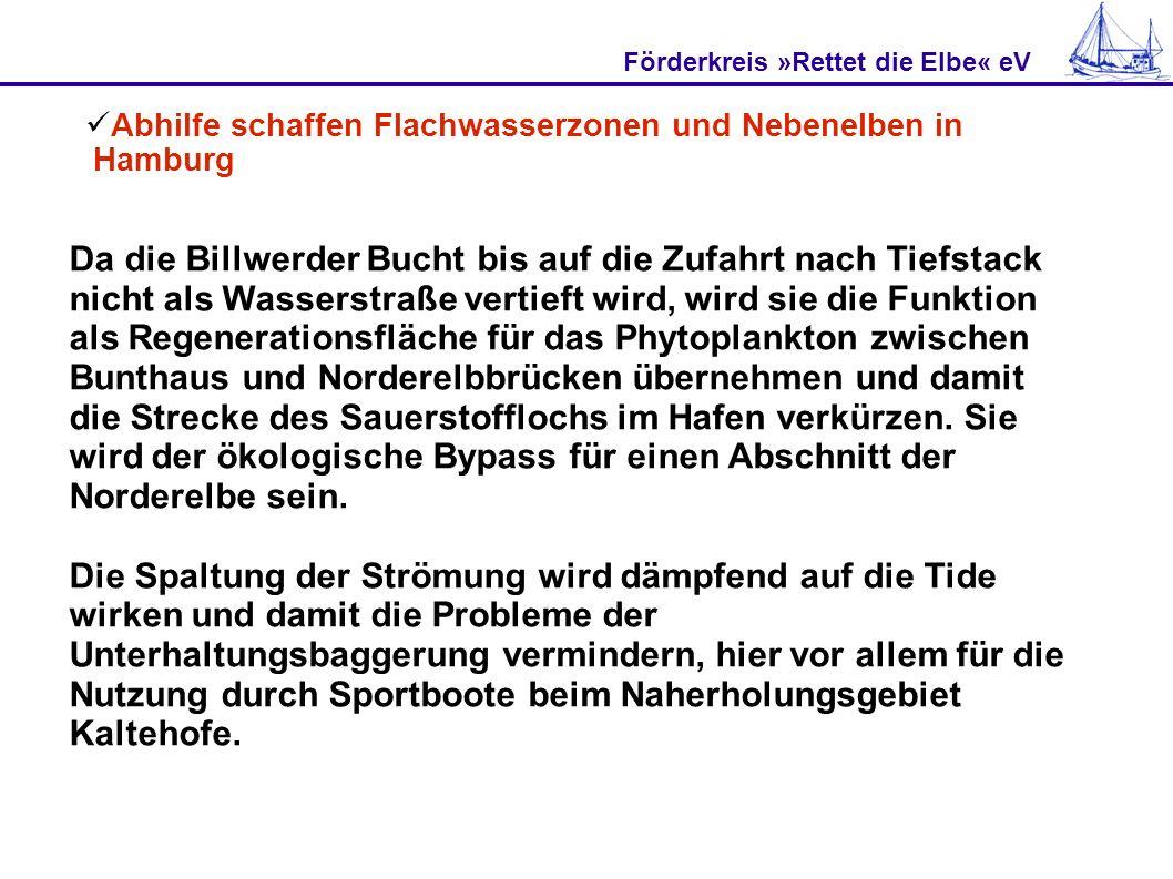 Förderkreis »Rettet die Elbe« eV Abhilfe schaffen Flachwasserzonen und Nebenelben in Hamburg Da die Billwerder Bucht bis auf die Zufahrt nach Tiefstac