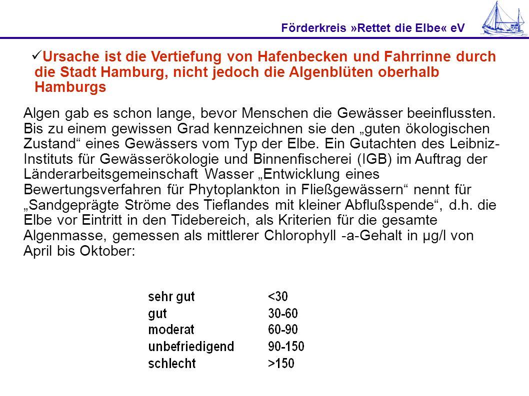 Förderkreis »Rettet die Elbe« eV Ursache ist die Vertiefung von Hafenbecken und Fahrrinne durch die Stadt Hamburg, nicht jedoch die Algenblüten oberha