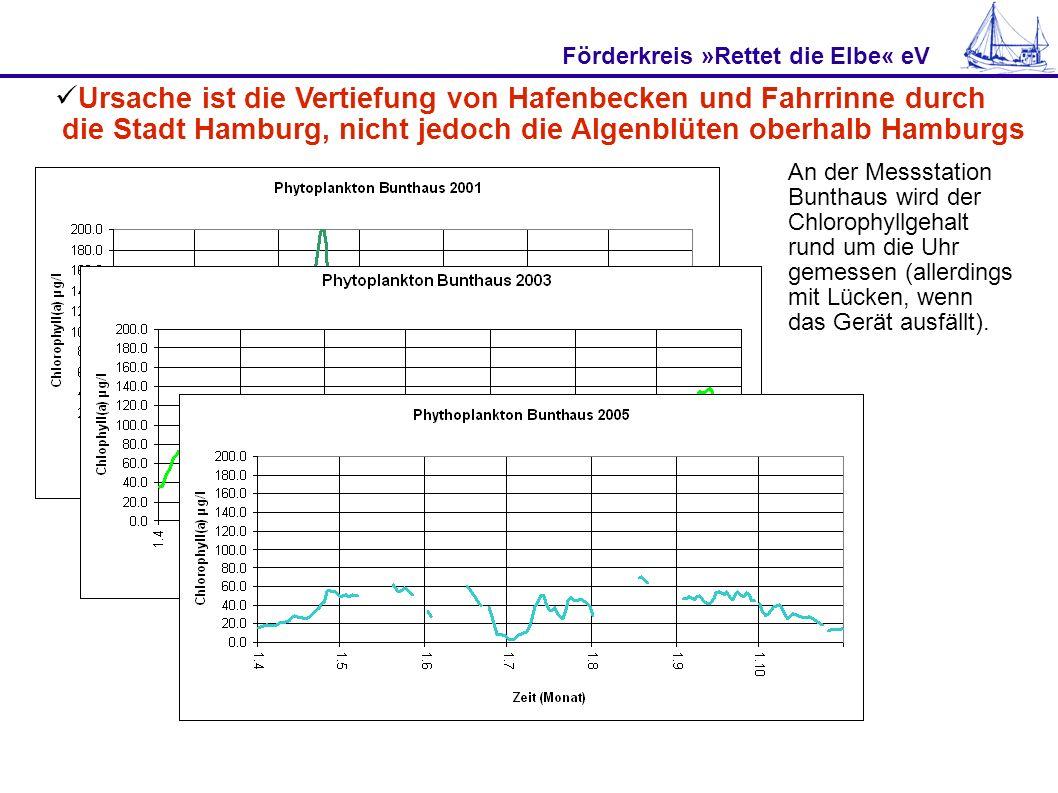 Förderkreis »Rettet die Elbe« eV 200122 Tage Sauerstoffloch an Station Seemannshöft 200343 Tage Sauerstoffloch an Station Seemannshöft 200521 Tage Sauerstoffloch an Station Seemannshöft Nach dem Kriterium Algenmasse (Chlorophyll-a-Gehalt) war die Elbe 2005 sogar in einem guten ökologischen Zustand.Trotzdem gab es Sauerstofflöcher.