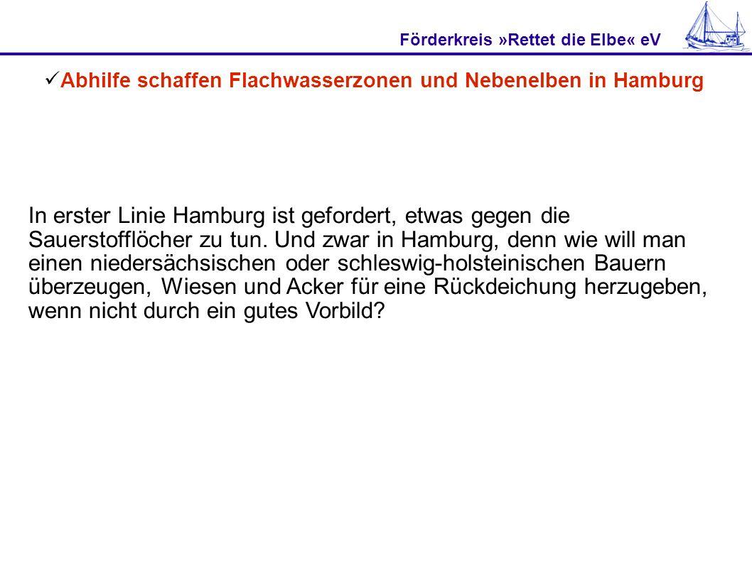 Förderkreis »Rettet die Elbe« eV Abhilfe schaffen Flachwasserzonen und Nebenelben in Hamburg In erster Linie Hamburg ist gefordert, etwas gegen die Sa
