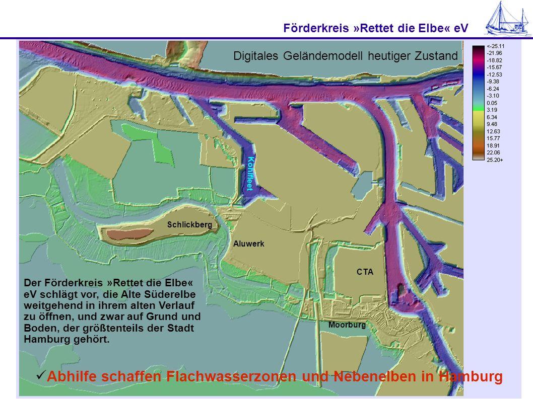 Förderkreis »Rettet die Elbe« eV Abhilfe schaffen Flachwasserzonen und Nebenelben in Hamburg Schlickberg Aluwerk CTA Moorburg Köhlfleet Von der Süderelbe soll die Neue Alte Süderelbe (NASE) zwischen Containerterminal Altenwerder und Kattwyk- Brücke nach Westen abzweigen.