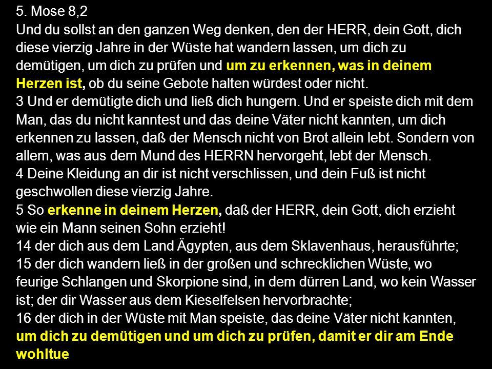 5. Mose 8,2 Und du sollst an den ganzen Weg denken, den der HERR, dein Gott, dich diese vierzig Jahre in der Wüste hat wandern lassen, um dich zu demü