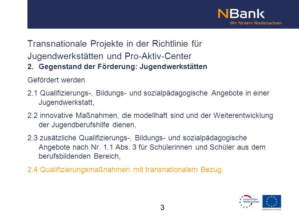 Transnationale Projekte in der Richtlinie für Jugendwerkstätten und Pro-Aktiv-Center 2.
