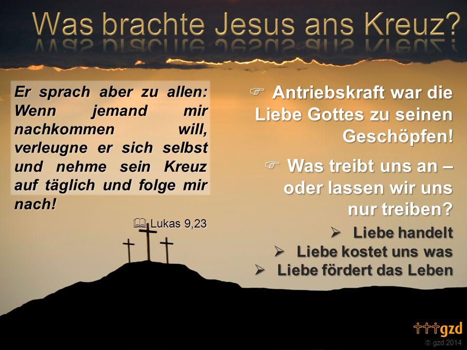 gzd 2014 Er sprach aber zu allen: Wenn jemand mir nachkommen will, verleugne er sich selbst und nehme sein Kreuz auf täglich und folge mir nach! Lukas