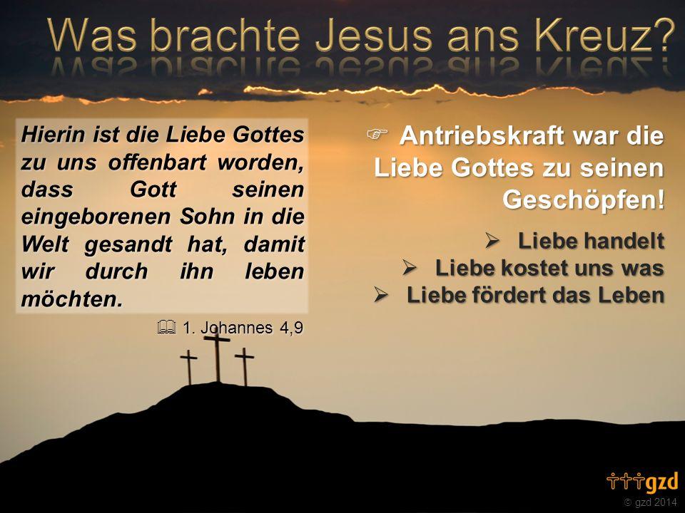 gzd 2014 Hierin ist die Liebe Gottes zu uns offenbart worden, dass Gott seinen eingeborenen Sohn in die Welt gesandt hat, damit wir durch ihn leben mö