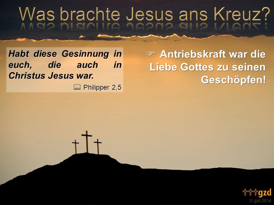 gzd 2014 Habt diese Gesinnung in euch, die auch in Christus Jesus war. Philipper 2,5 Philipper 2,5 Antriebskraft war die Liebe Gottes zu seinen Geschö