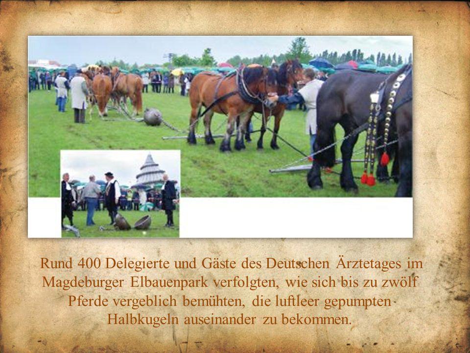 Rund 400 Delegierte und Gäste des Deutschen Ärztetages im Magdeburger Elbauenpark verfolgten, wie sich bis zu zwölf Pferde vergeblich bemühten, die lu