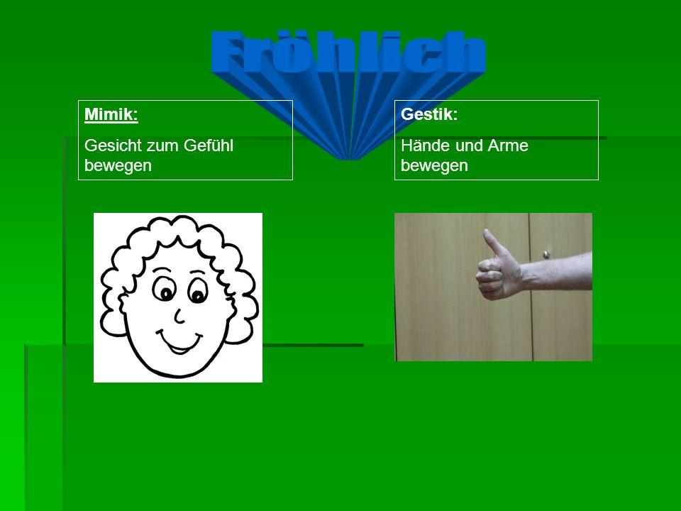Gestik: Hände und Arme bewegen Mimik: Gesicht zum Gefühl bewegen