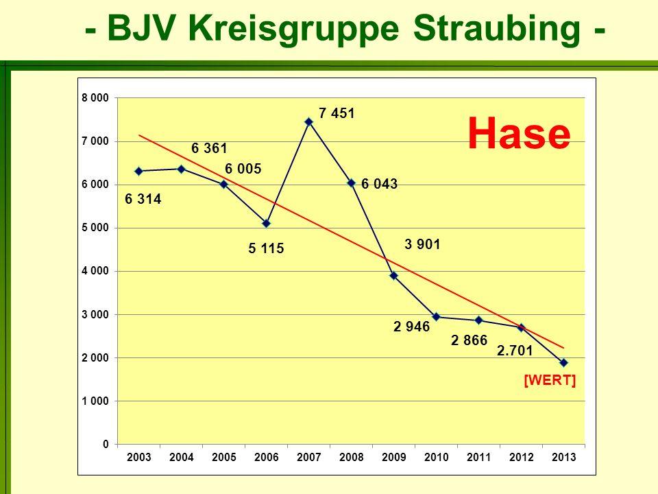 - BJV Kreisgruppe Straubing - Rehwildstrecke 2013