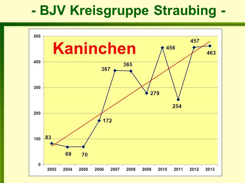 - BJV Kreisgruppe Straubing -