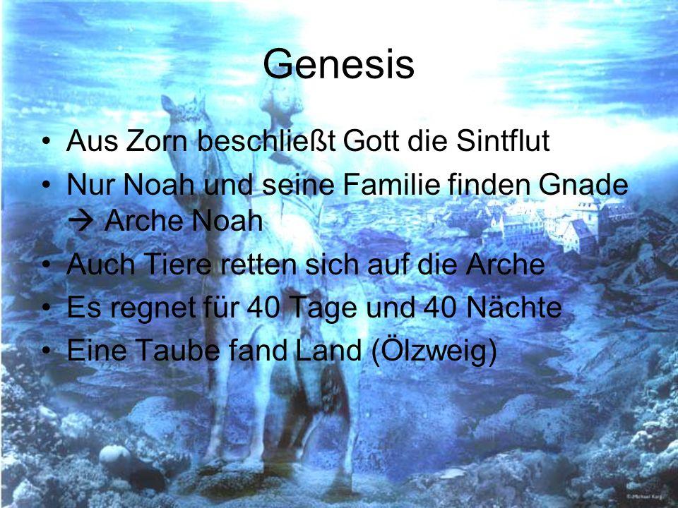 Genesis Aus Zorn beschließt Gott die Sintflut Nur Noah und seine Familie finden Gnade Arche Noah Auch Tiere retten sich auf die Arche Es regnet für 40