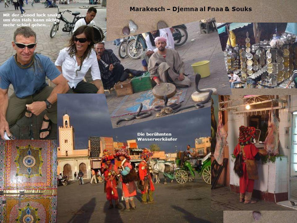 Marakesch – Djemna al Fnaa & Souks Mit der Good luck snake um den Hals kann nichts mehr schief gehen... Die berühmten Wasserverkäufer
