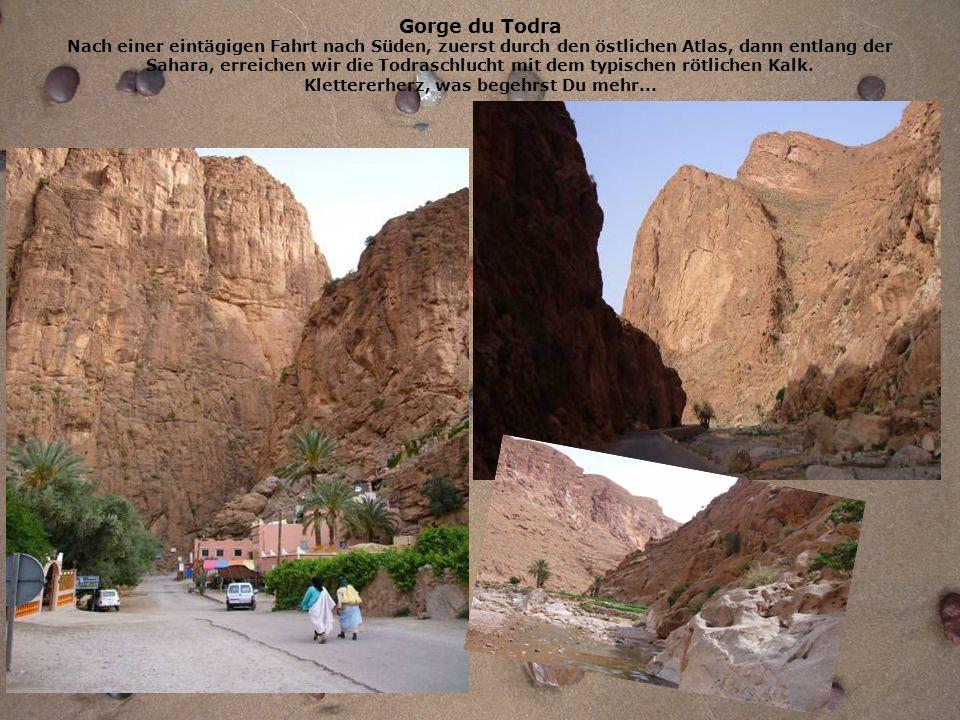 Gorge du Todra Nach einer eintägigen Fahrt nach Süden, zuerst durch den östlichen Atlas, dann entlang der Sahara, erreichen wir die Todraschlucht mit