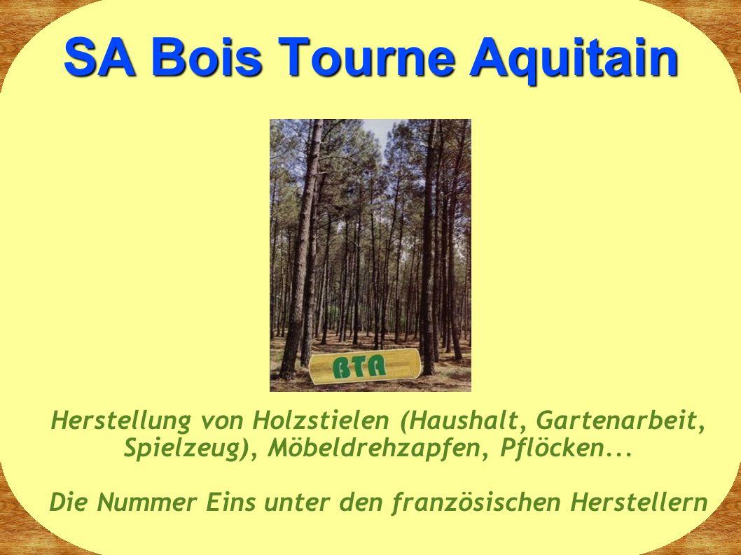 SA Bois Tourne Aquitain Herstellung von Holzstielen (Haushalt, Gartenarbeit, Spielzeug), Möbeldrehzapfen, Pflöcken...